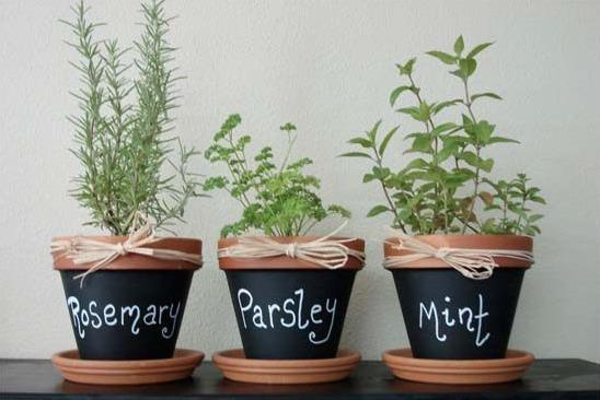THK DIY Herb Garden1
