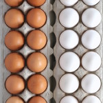 7 EGG-citing Egg Facts Every Home Cook Oughta Know