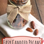 Easy Candied Pecans (Just 5 Minutes and 4 Ingredients!)