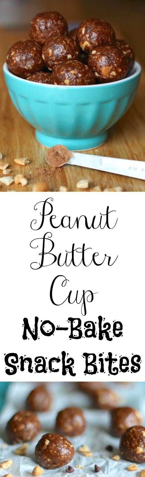 Peanut Butter Cup No-Bake Snack Bites Recipe {www.TwoHealthyKitchens.com}