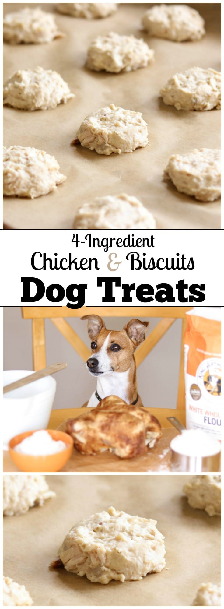 Perfect for using up leftover chicken! These easy Homemade Dog Treats are the doggy version of that classic comfort food, chicken and biscuits! Just store your leftover chicken in the freezer until you're ready to make these healthy dog treats. And there's no need to fuss with cookie cutters – these easy drop biscuits are so much faster! With just 4 ingredients, this dog treat recipe is ultra quick and easy, and these store beautifully in the freezer for weeks! | www.TwoHealthyKitchens.com