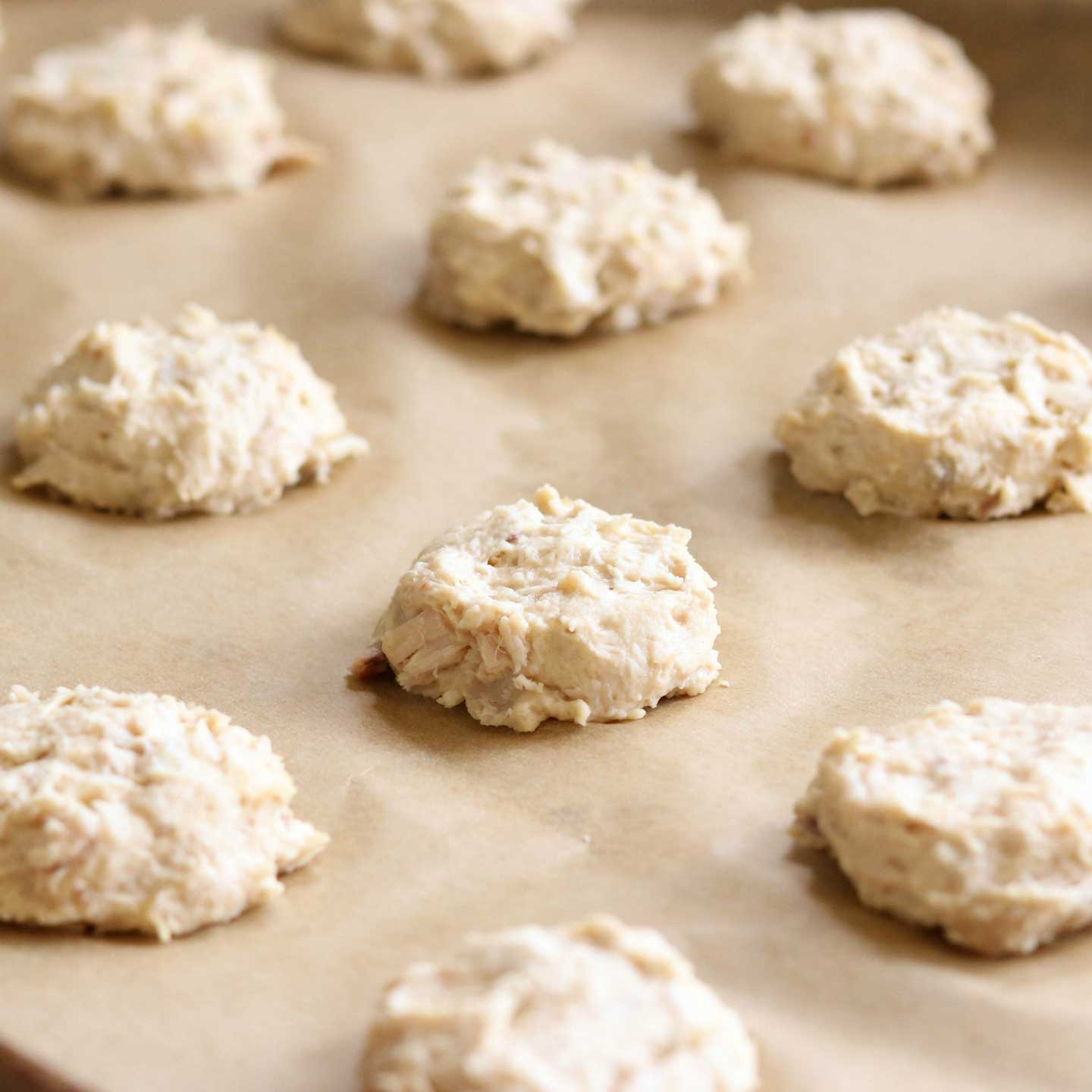Homemade Natural Dog Biscuits Recipes