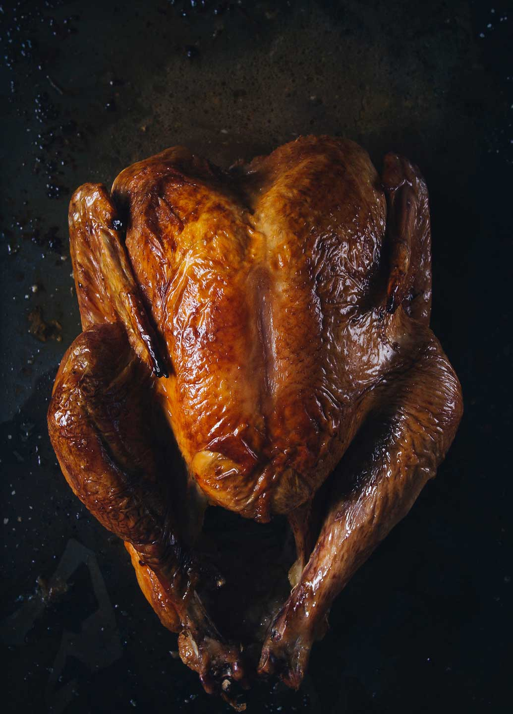 Ever wonder: can you cook a turkey in an Instant Pot electric pressure cooker? You can! This gorgeous recipe for Instant Pot Turkey proves it!