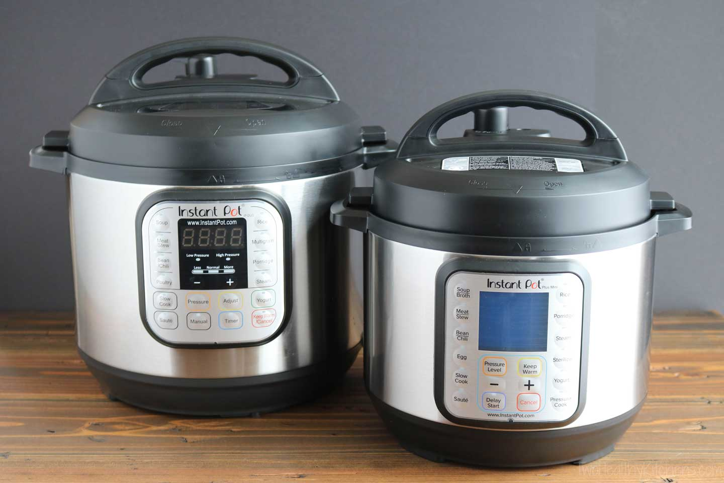 There are quite a few different sizes and models out there, but most Instant Pots have roughly the same basic functions. So if you're wondering what you can cook with an Instant Pot, the answer will be more or less the same, regardless of which size or model you choose.