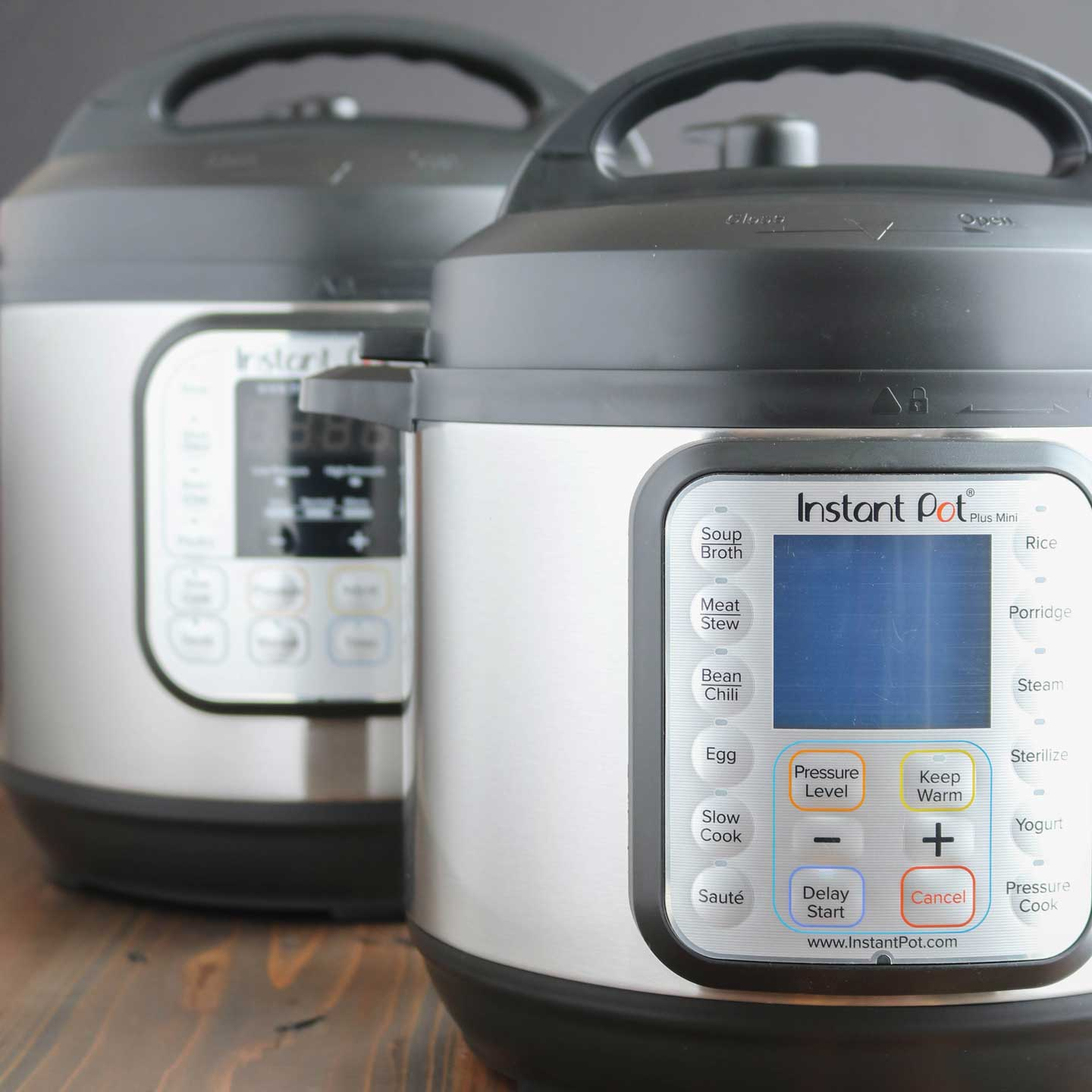 Which Instant Pot to buy? There are so many options, functions, models and sizes to consider in making that decision!