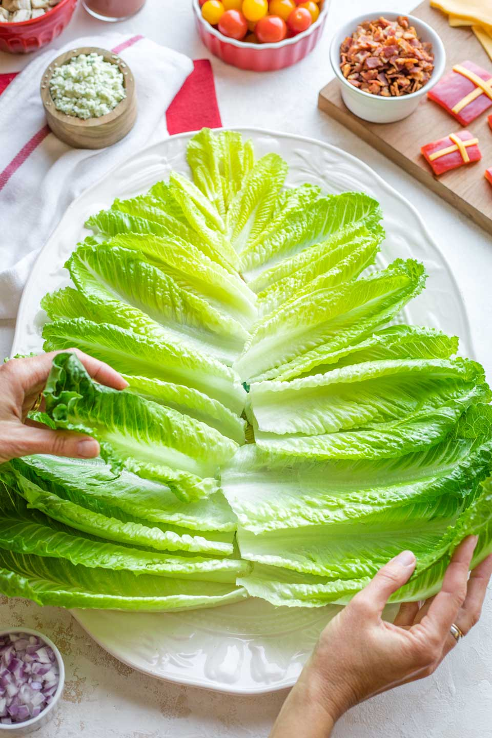 two hands arranging lettuce spears in a Christmas-tree shape on a large white platter