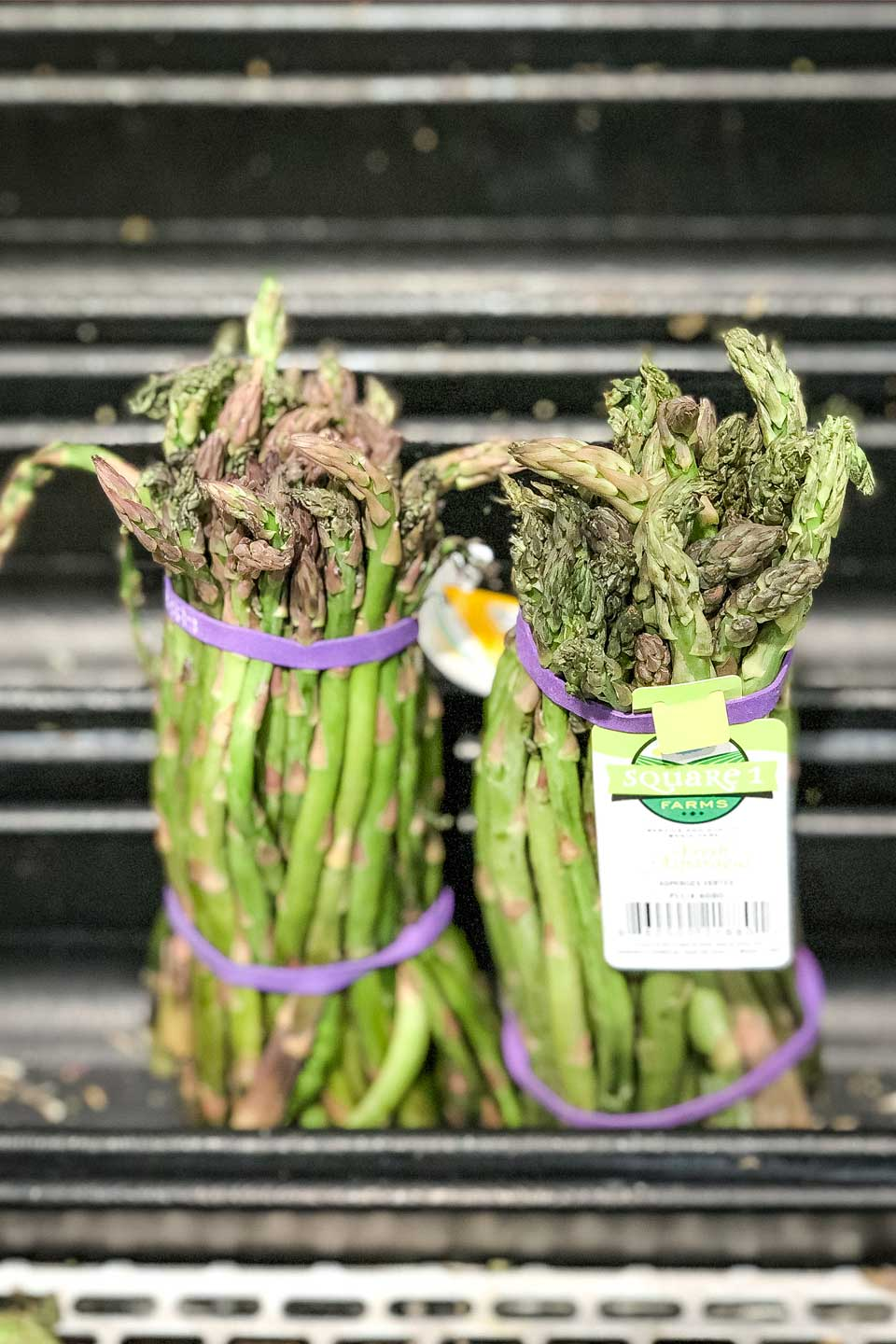 Two bunches of asparagus held together with purple rubber bands and sitting in the little water troughs in a grocery store display.